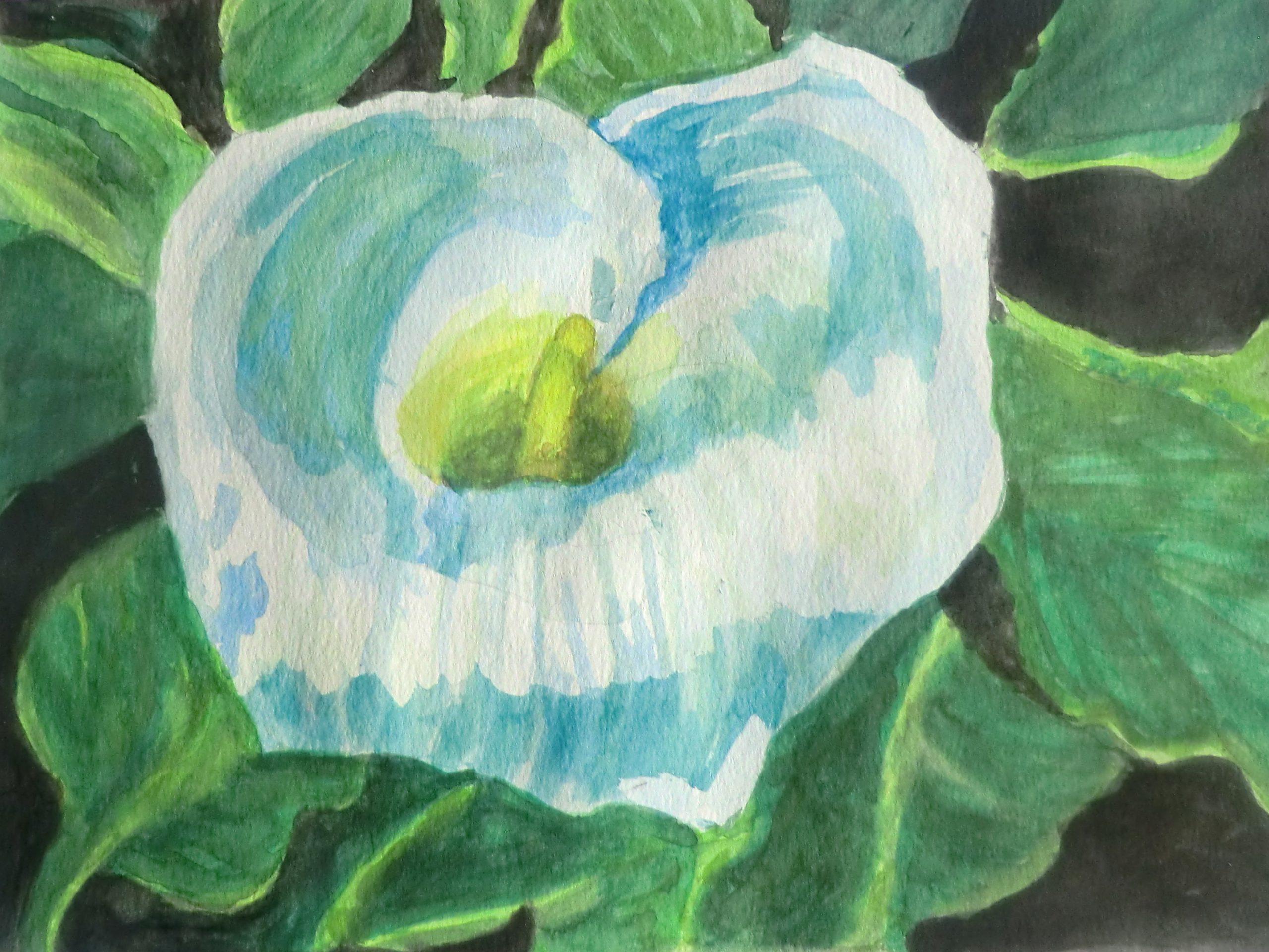 VAC Online Art Show